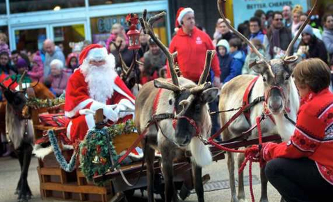 Reindeer Parade blog 1