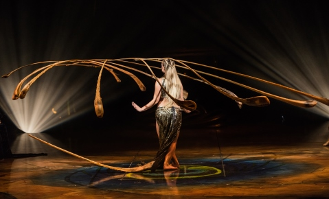 Amaluna presents several breathtaking acts. One of them is the Balance Goddess. She creates a world in equilibrium with a mobile made of thirteen palm leaf ribs. Photo legend: Martin Girard/shootstudio.ca Costumes: Mérédith Caron © 2015 Cirque du Soleil